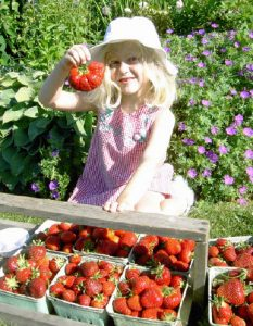 girl holds up a giant strawberry