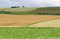 Crop fields in northern Maine, photo by Edwin Remsberg, USDA