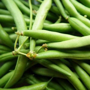 """Photo of green beans for marking our """"Beans"""" vegetable gaden category."""