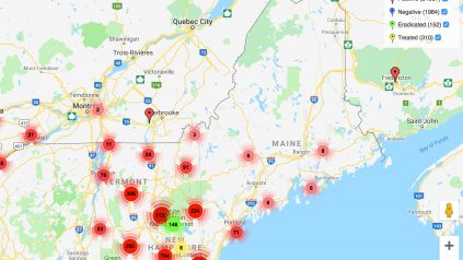 screenshot of invasive species map from eddmaps.org