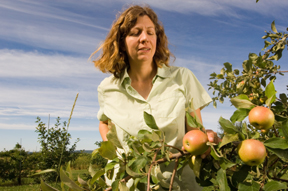 Tree fruit specialist Renae Moran with apples; photo by Edwin Remsberg, USDA
