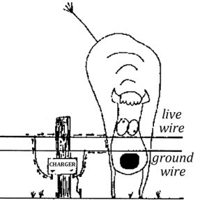 Illustration showing a cow and an electric fence with a live wire and a ground wire