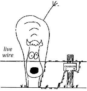 Illustration of a cow and electric fence with a single live wire and charger
