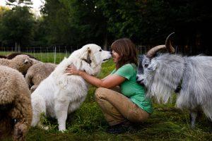 Abby Sadauckas with her dog, sheep, and goats