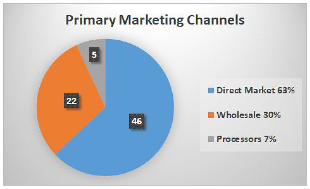 Piechart showing: Primary Marketing Channels: Direct Marketing = 46%; Wholesale = 22%; Processors = 5%