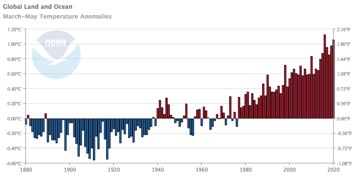 Global mean MAM temperature anomaly timeseries. Image from NOAA/NCEI Climate at a Glance.
