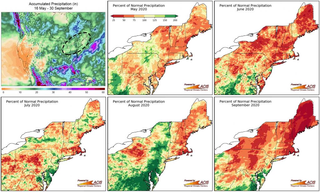 precipitation maps