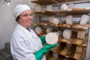 goat cheese producer with wheels of hard goat cheese
