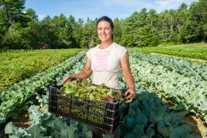 Woman farmer standing in feild with a full tray of fresh lettuce