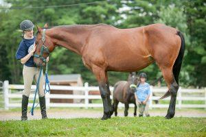 UMaine youth with horses