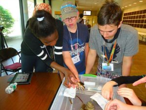 4-H youth work on an ocean science project