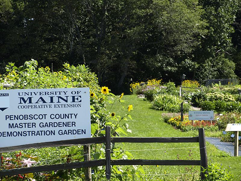 master gardener demonstration gardens