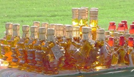 Bottles of Maple Syrup on a table