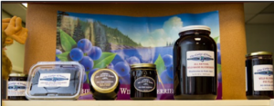 Samples of blueberry products
