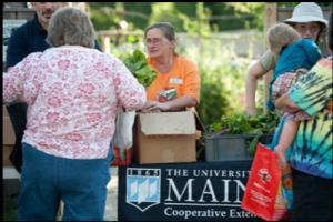 People distributing and picking up food