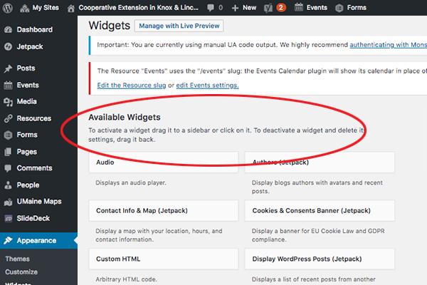 screenshot of available widgets area