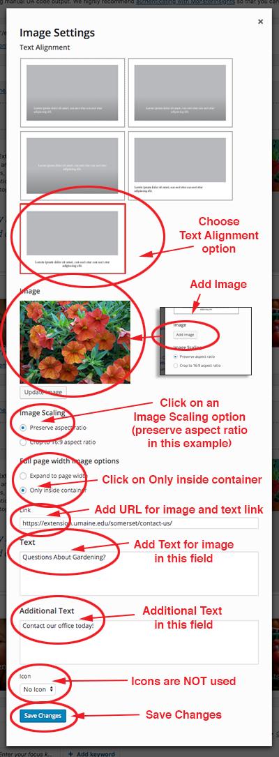 screenshot of Image setting editing window