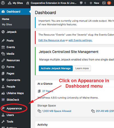 screenshot of the appearance tab on the dashboard