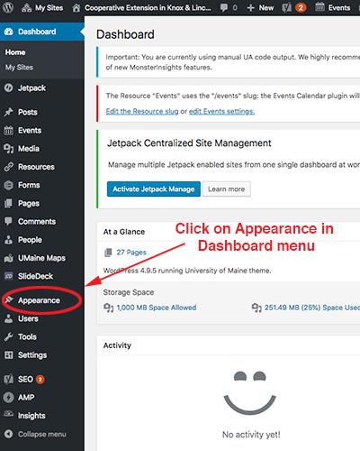 screenshot of choosing the appearance tab on the dashboard