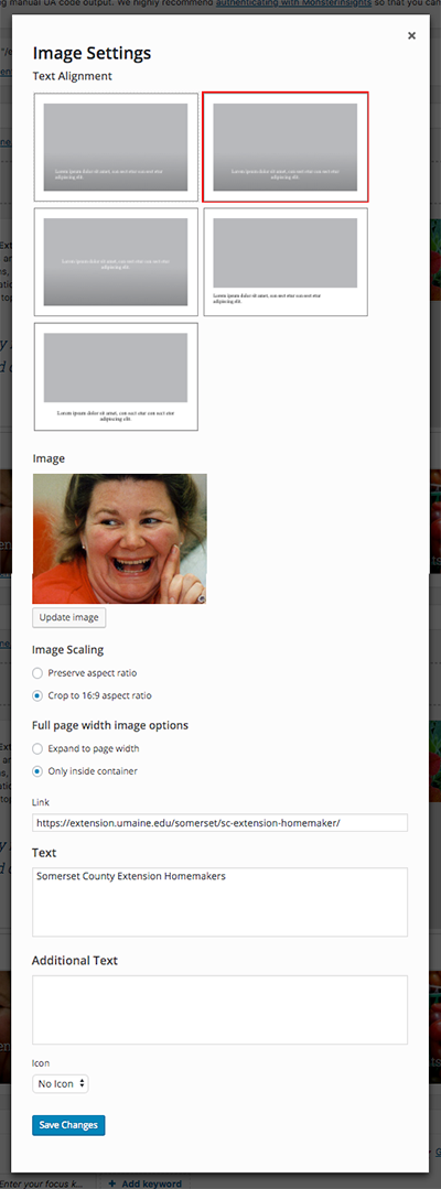 screenshot of image settings window for multiple column image