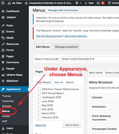 screenshot of choosing menu under appearance