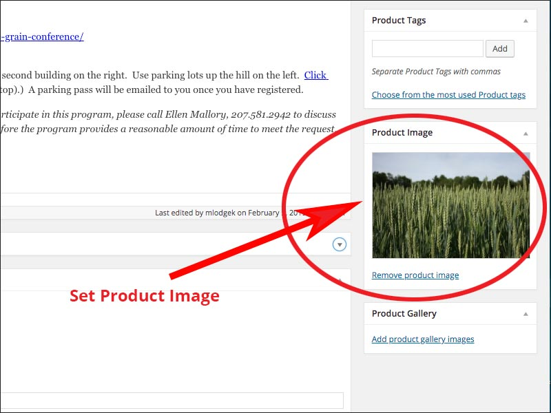 screenshot of Where to set the product image.