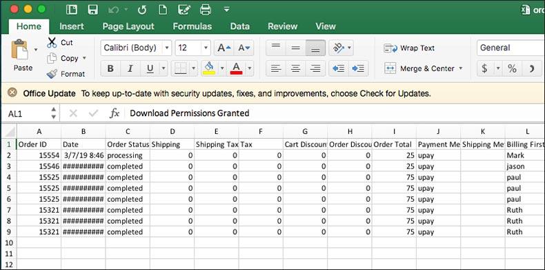 screenshot of WooCommerce-generated Excel Spreadsheet