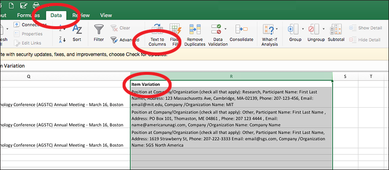 screenshot of how to exporting item variation from an excel spreadsheet for a report