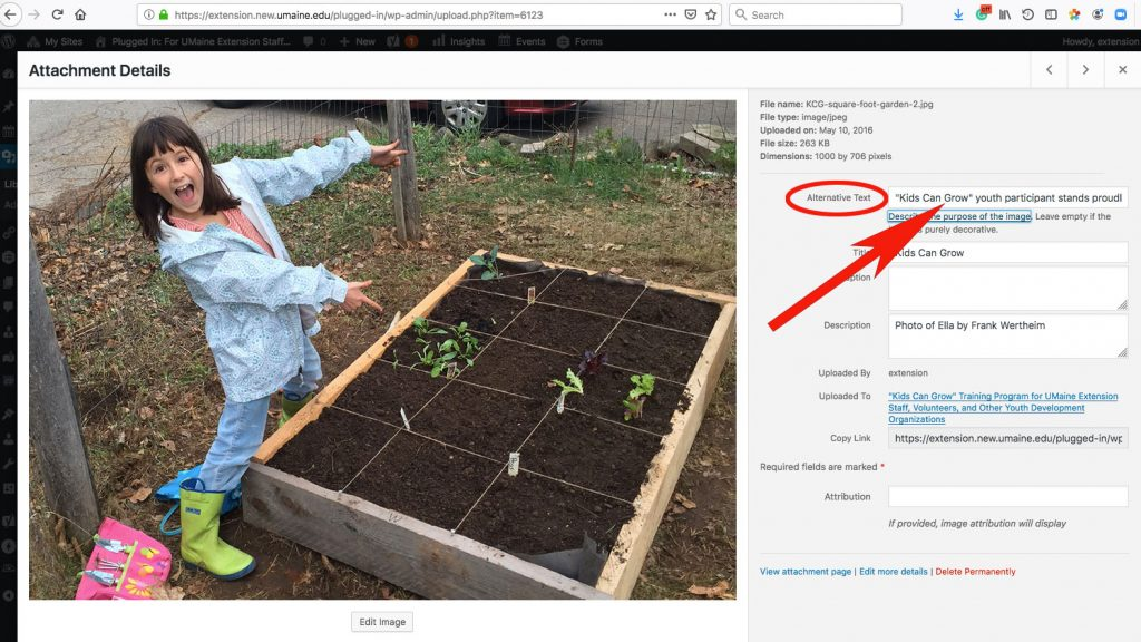 Screenshot showing where to add ALT Text to images in WordPress