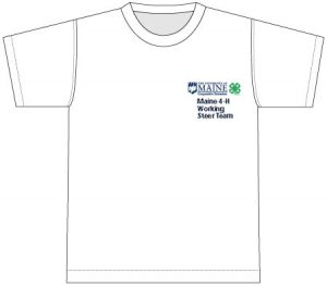 illustration of a white t-shirt with a 4H logo and text on the front pocket