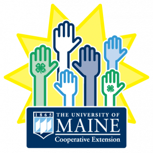 graphic icon for recognition of outstanding UMaine Extension volunteers