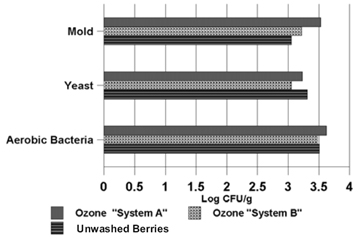 """Figure 1: Graph shows the populations of specific microbes on blueberries when they were washed for ten minutes with Ozone """"System A"""", washed for ten minutes with Ozone """"System B,"""" or left unwashed as a control group. All figures listed here are approximations from reading the graph, represented in units of Log CFU/g. Mold populations were at 3.55 with Ozone """"System A,"""" 3.25 with Ozone """"System B,"""" and 3.1 on the unwashed blueberries. Yeast populations were at 3.25 with Ozone """"System A,"""" 3.1 with Ozone """"System B,"""" and 3.3 on the unwashed blueberries. Aerobic bacteria populations were at 3.65 with Ozone """"System A,"""" 3.5 with Ozone """"System B,"""" and 3.5 on the unwashed blueberries."""