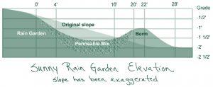sunny rain garden elevation