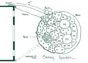 sunny rain garden plan