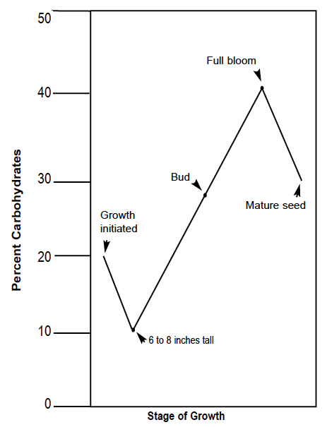 Stage of Growth: growth initiated - 20% carbohydrates; 6 to 8 inches tall - 10%; bud - 28%; full bloom - 40%; mature seed - 30%