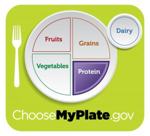 ChooseMyPlate.gov, Protein