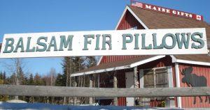 Balsam Fir pillows sign