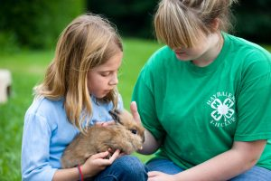 Two 4-H'ers with a rabbit; photo by Edwin Remsberg