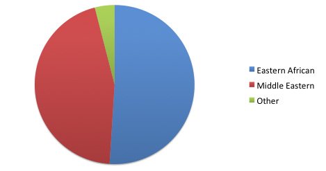 pie chart showing a little more than half are Eastern African, nearly half are Middle Eastern, and the remainder are from other locations.