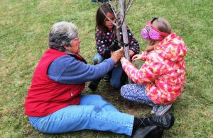 Woman and two children plant a tree