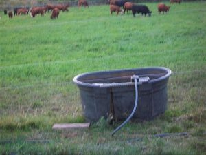 water tank with float on a fence line