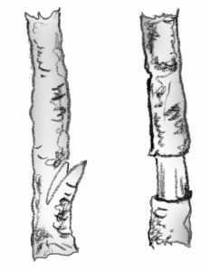 illustration showing air layering techniques
