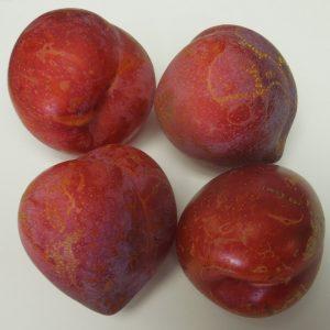 Superior plums