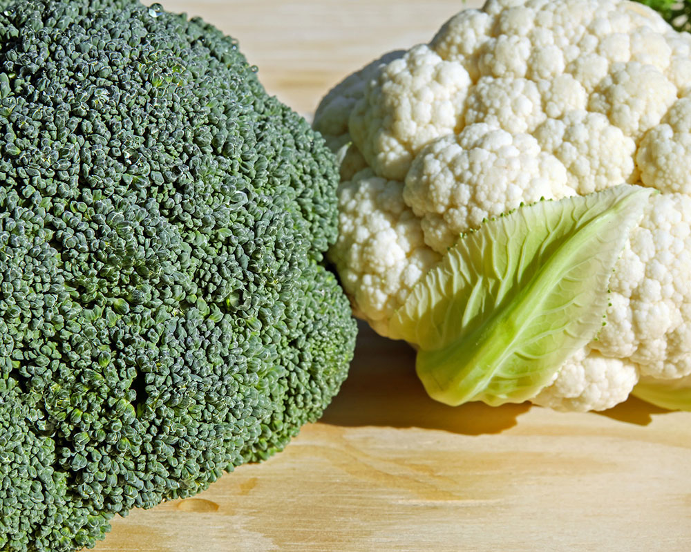Bulletin 4177 Vegetables And Fruits For Health Broccoli And Cauliflower Cooperative Extension Publications University Of Maine Cooperative Extension