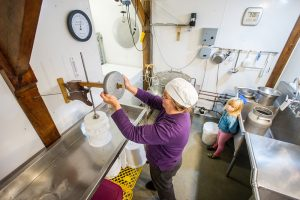 Cheese maker processes cheese in her farm kitchen while a child watches on