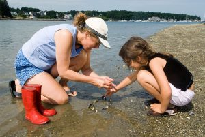 Mom and daughter talking on a beach while collecting shells