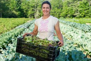 woman farmer in the field with a tray of fresh-picked lettuce