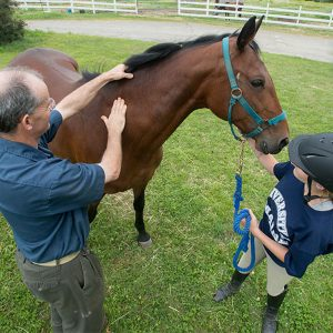 veterinarian and youth with a horse