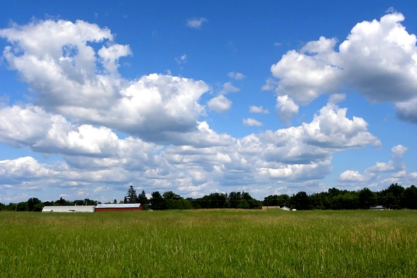 Rogers Farm