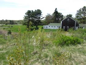 Tidewater Farm